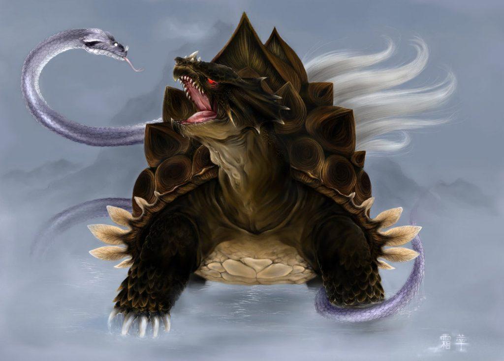 Tartaruga Negra
